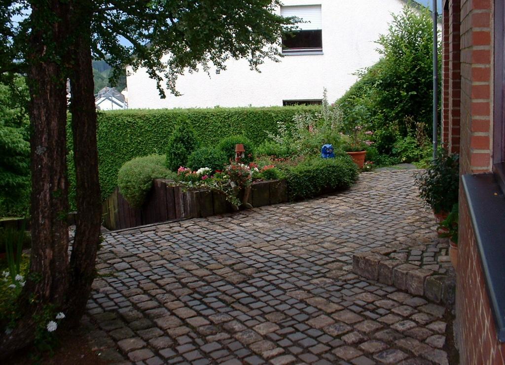 Passion jardin entretien du jardin et suivi for Entretien jardin quesnoy sur deule